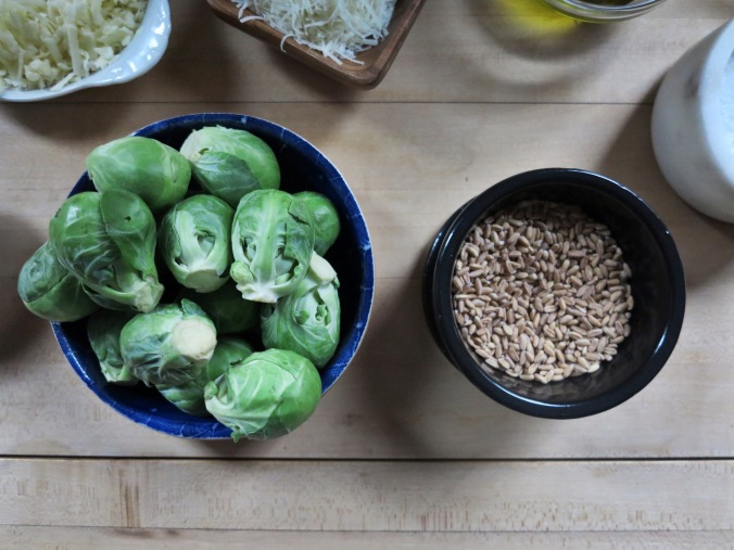 Brussels Sprout and Farro Gratin | apinchofthis.nyc
